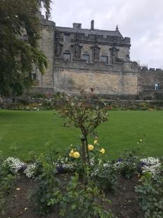 Queen Anne Garden